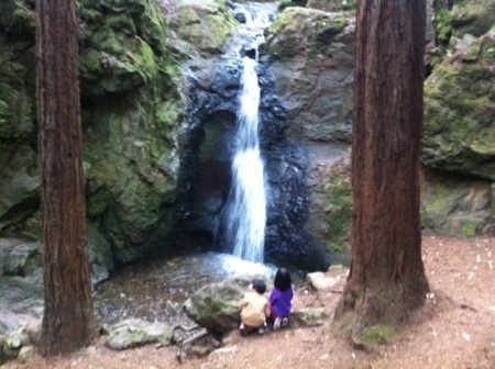 5 Spectacular Waterfall Hikes in the Bay Area