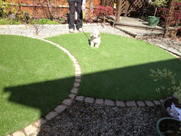 getting the perfect circular lawn google search - Garden Design Circular Lawns