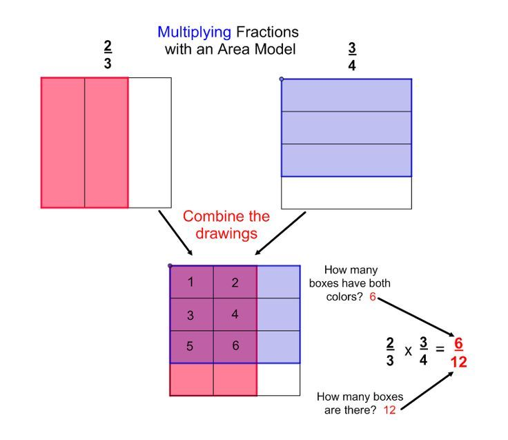 Multiplication Set Model Worksheets - fraction ...