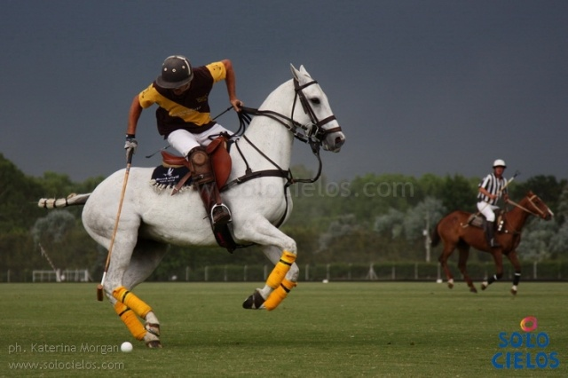 Amazing polo photography by the very talented Katerina Morgan ... check out her website to buy prints and limited edition artworks http://www.solocielos.com