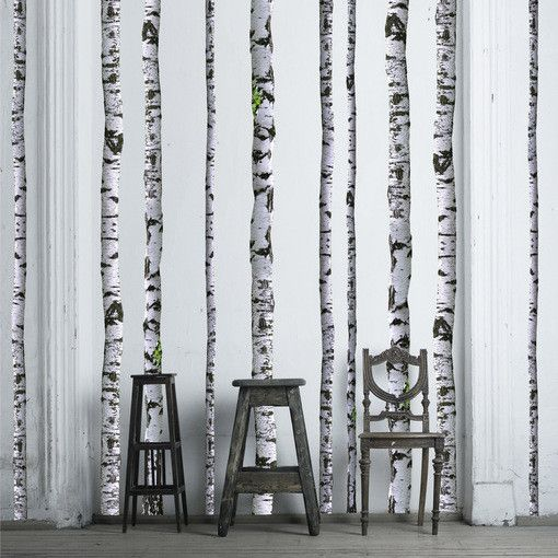Super Real Birch Trees Vinyl Wall Decal. Apparently, walls do need love. Love birch trees, love this decal.