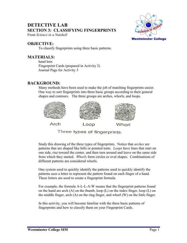 Classifying Fingerprints Fingerprint Cards Hand Lens Book Report
