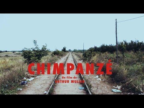 Odezenne - Chimpanzé - Clip Documentaire officiel - YouTube