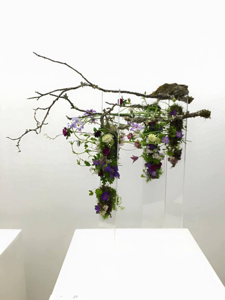 Japan Flower Award 2016 ( NFD) Kyoto.