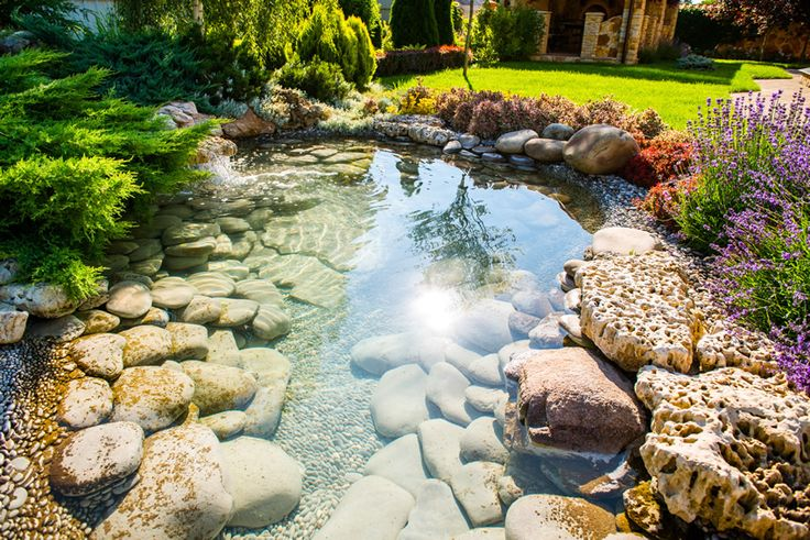 Beautiful water feature pond with natural stones in garden
