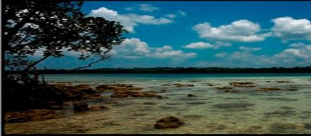 Pugmarks offers cheap Andaman Tour Packages. The Andamans Camp takes the participants to the exotic islands of Andamans. http://www.pugmarks123.com/exotic-andaman.html