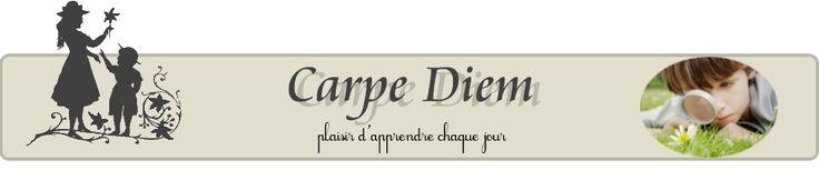 Association Carpe Diem
