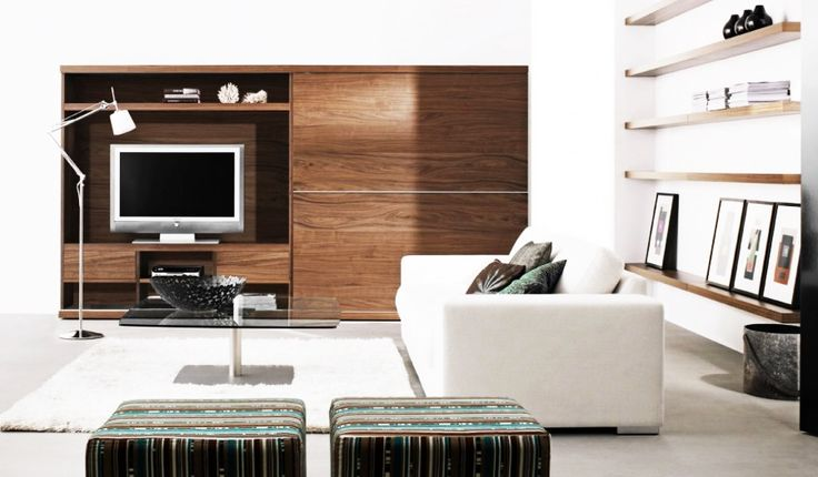 Furniture, Amusing White Sofa Wooden Shelf Contemporary Living Room Furniture: Modern Contemporary Furniture Design Ideas for Elegant Living Room