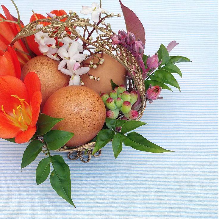 """49 Gostos, 6 Comentários - a pajarita (@a_pajarita) no Instagram: """"Floral detail Photo and flowers by a pajarita . . . . . #apajarita #flowers #floraldetails #floral…"""""""