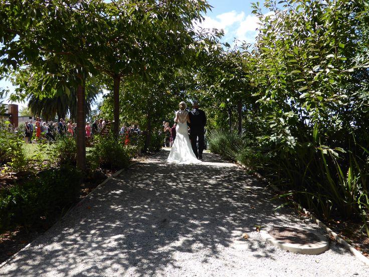 Janelle & David's Garden Wedding at Bellinzona. Jan 31st 2015.