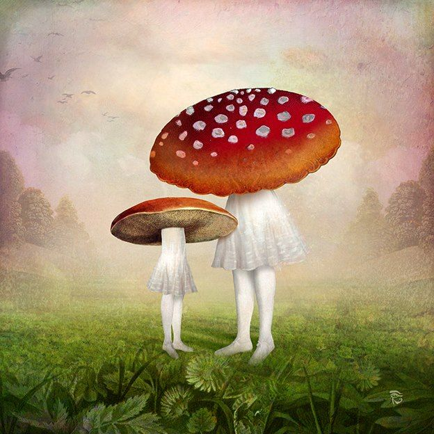 """ Forest Dwellers "" by Christian Schloe"