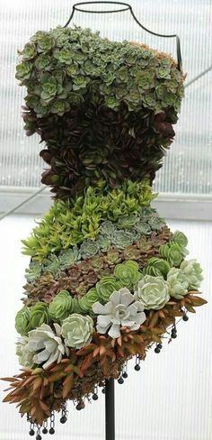 Dress form succulents by Tammy Sawyer Simpson. Form filled with moss and then planted with both rooted and clipped succulents. (Dress form from Hobby Lobby.)