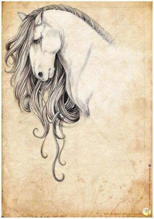 Love this, i would do watercolor tattoo and make the mane different bright colors with black outlineing of the body and face