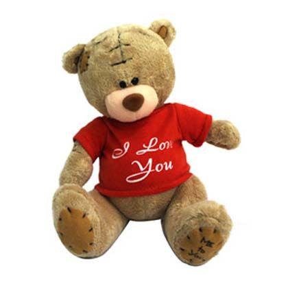 valentines teddy bears personalized