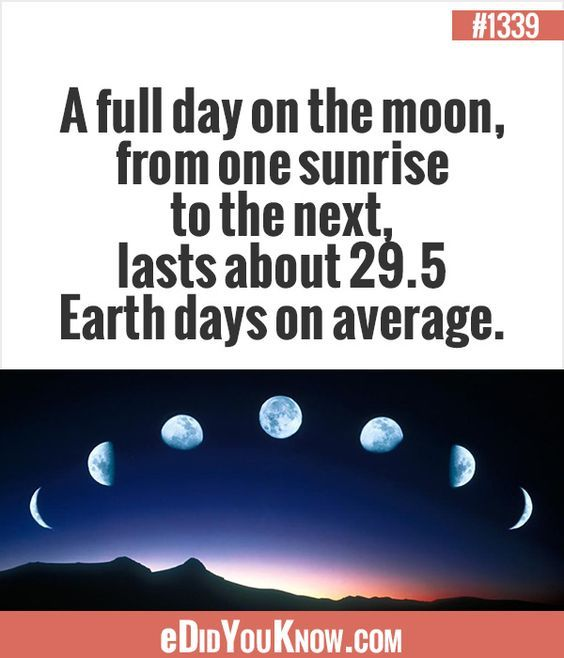 Image result for fun facts about the earth