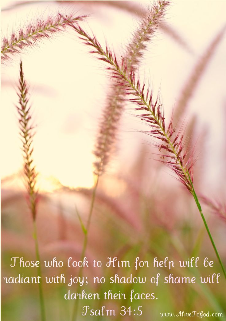 """""""They looked unto him, and were lightened: and their faces were not ashamed.""""   Psalm 34:5"""