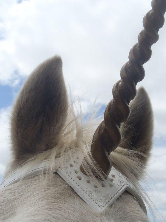 Unicorn Filigree leather brow band OOAK by ThePaintedPonyTack
