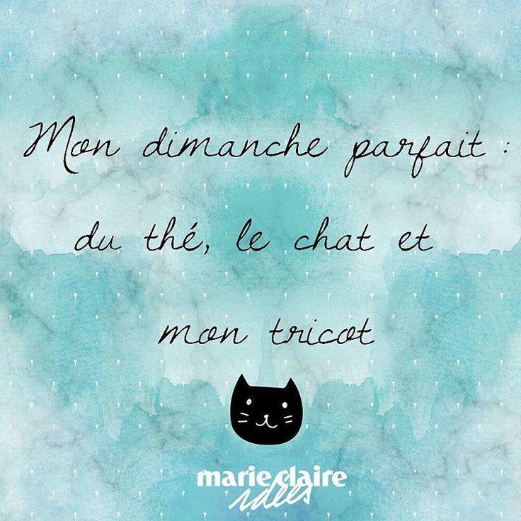 Mon dimanche parfait : thé, chat et tricot My perfect Sunday: tea, cat and knitting