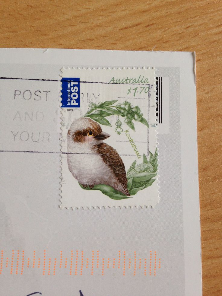Bird postage stamp from Australia.