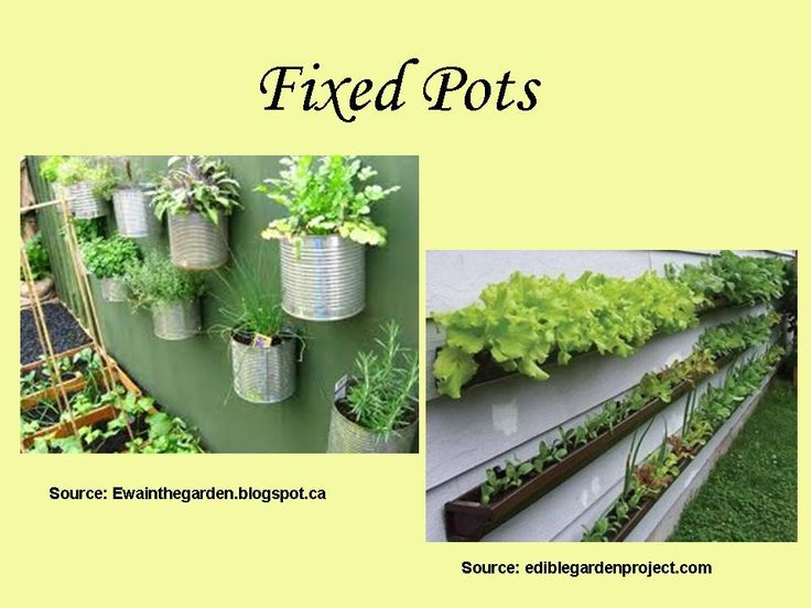 growing a garden great for the environment and the budget Garden design process – from the first meeting to your new outdoor space – at growing rooms we are passionate about creating innovative and exciting outdoor spaces and would love the opportunity to share our passion with you.