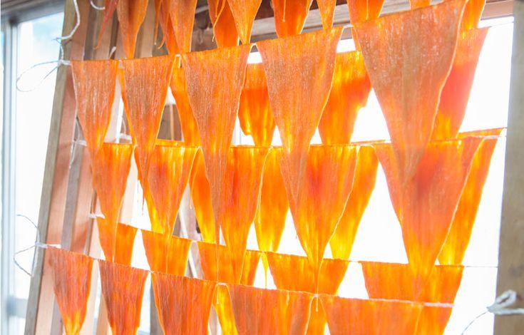 金沢21世紀美術館「島袋道浩:能登」 くちこづくり|石川県 金沢市|「colocal コロカル」ローカルを学ぶ・暮らす・旅する