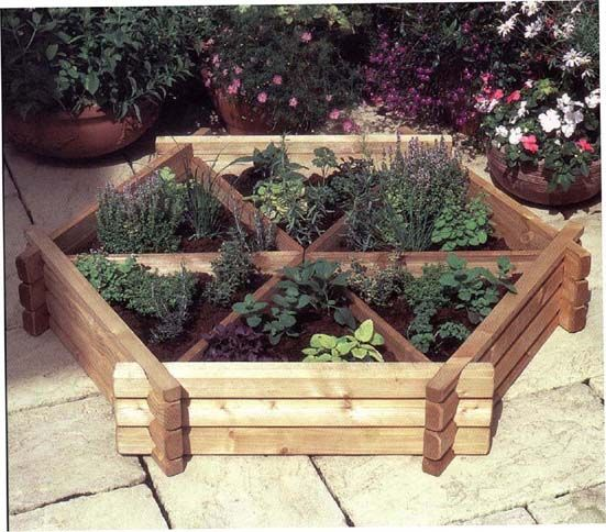 "herbs in a raised bed.  ~pvc piping (corner x corner) will frame stretched plastic for ""greenhouse"" effect."