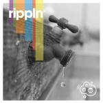 What Is Rippln? Why Does Success Leave Clues...