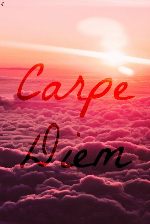 Phone Wallpapers Quotes Carpe Noctom 93 Best Carpe Diem Images On Pinterest Carpe Diem Carpe
