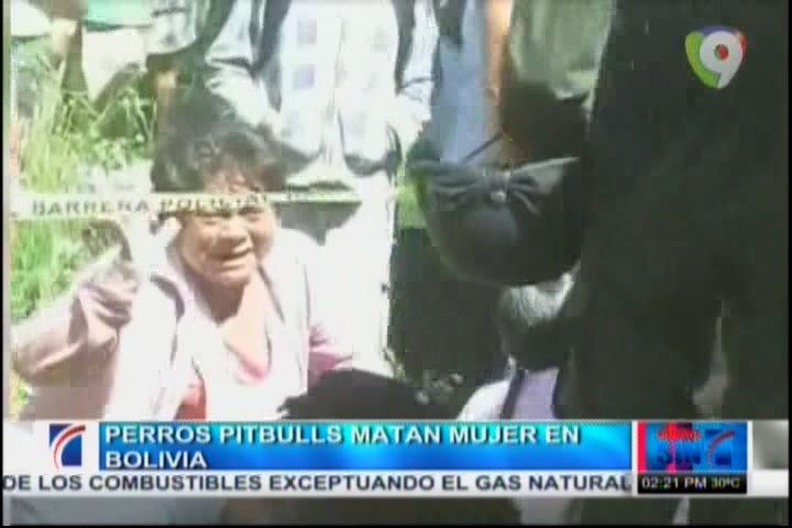 Mujer Muere Atacada Por Perros Pitbulls En Bolivia #Video