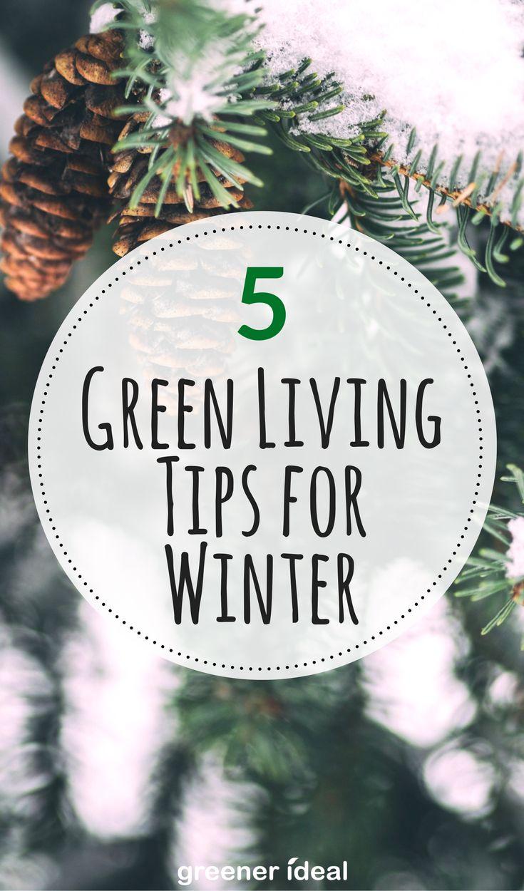 Green living tips for winter