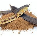 Algarroba, combate el cansancio, protege el sistema cardiovascular, mejora el sistema inmunológico y la memoria ecoagricultor.com