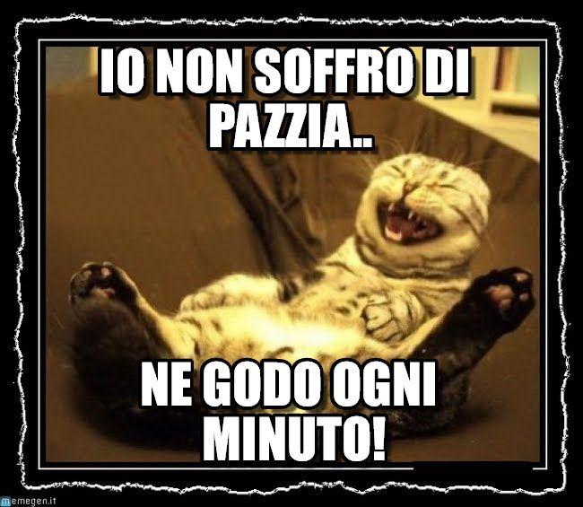 Gattoride : Io Non Soffro Di Pazzia.., Ne Godo Ogni Minuto! - by StefanoSantalucia