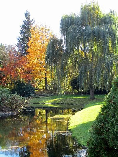Dow Gardens - one of my favorite local destinations!