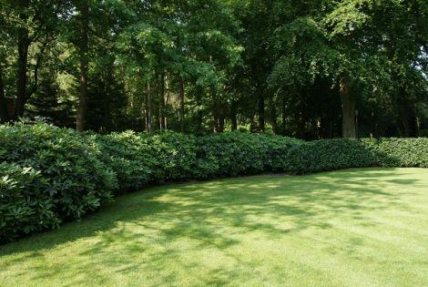 Aangelegde tuinen door tuinonderneming Monbaliu - Winnaar Vlaamse Tuinaannemer JONG TALENT 2010 2011 Tuin rond prachtig landgoed in bosrijk gebied