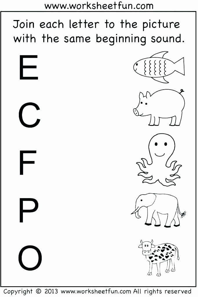 Kindergarten Science Worksheets Free Kindergarten Science W In 2020 Free Kindergarten Worksheets Printable Preschool Worksheets Kindergarten Worksheets Free Printables