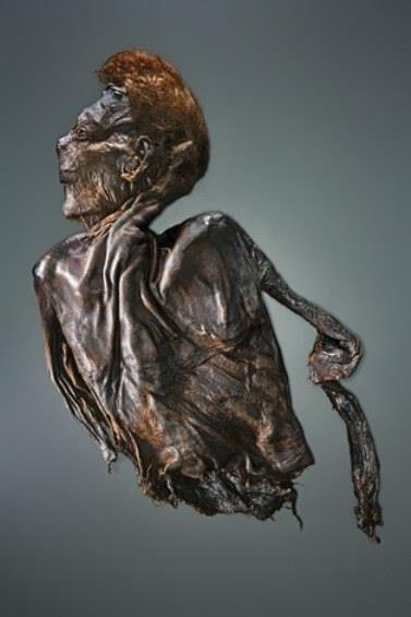 Hair piled high above folds of leathery skin, Clonycavan Man is one of hundreds…