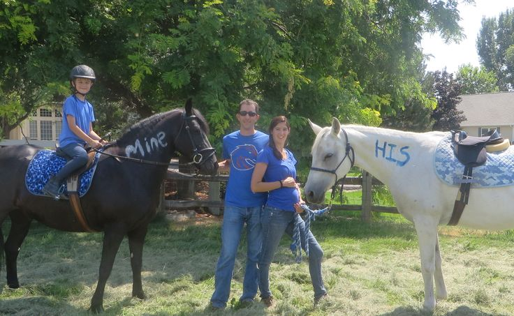 Gender Reveal With Our Horses Gender Reveal Party