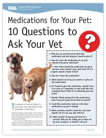 Medications for Your Pet: 10 Questions to Ask Your Vet