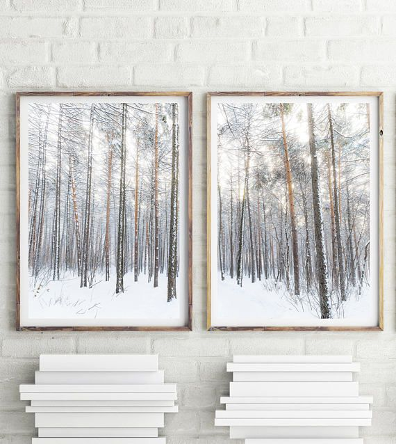 Winter Forest Prints Set Of 2 Prints Nature Photography