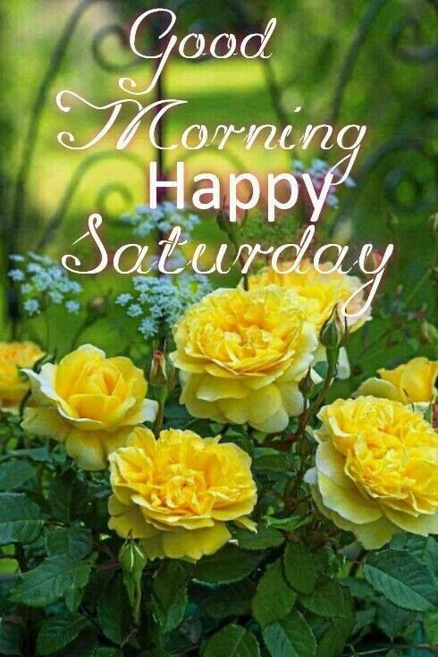 Good Morning, Happy Saturday good morning saturday saturday quotes good morning quotes happy saturday good morning saturday quotes saturday image quotes happy saturday morning saturday morning facebook quotes happy saturday good morning