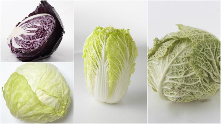 All About Cabbage: How To Pick, Store, Prep, and Cook It