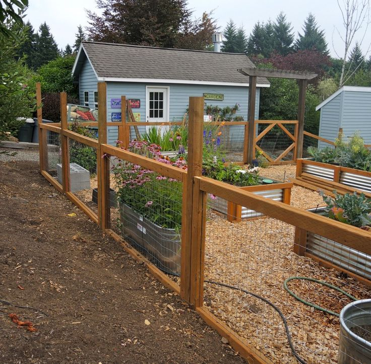 I love the tin sides! veggie garden fencing