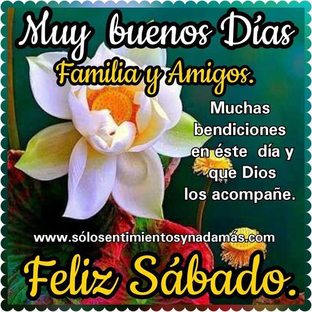 Muy Buenos Dias Familia Y Amigos Buenos Dias Feliz Sabado