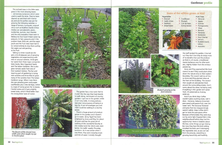 Map Coffee Garden featured in 'Your Vegie Patch'
