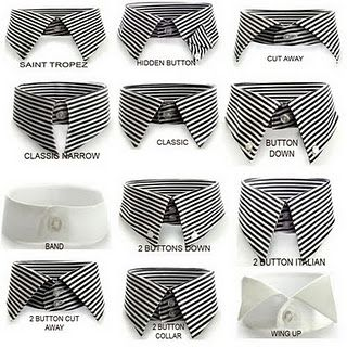 Know your collars gentlemen.