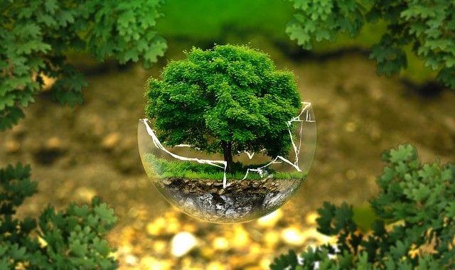 La conciencia social cada vez da más relevancia a los VALORES como una variable fundamental a la hora de tomar decisiones de compra o inversión