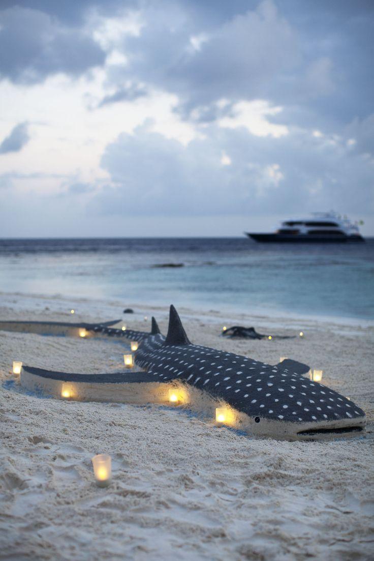 BBQ at desert Island prepared by luxury yacht maldives crew