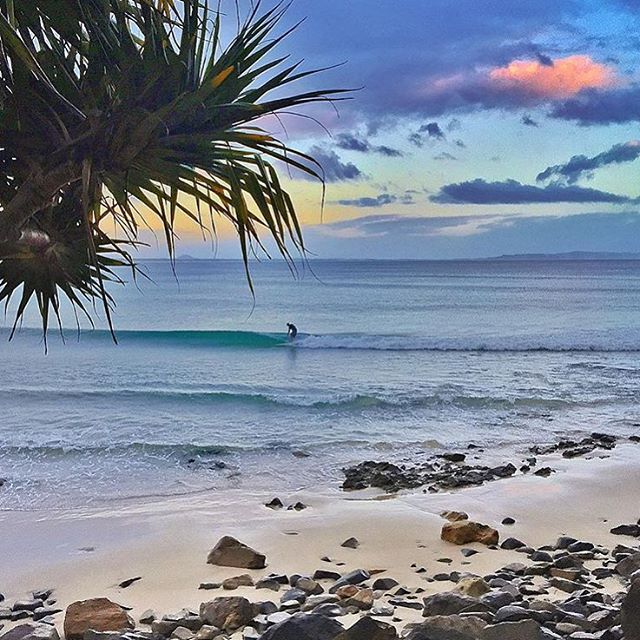 Starting the day with some sunrise waves at Noosa Main Beach's First Point  First Point has a perfect longboard break and on a medium sized swell it's perfect for beginners.