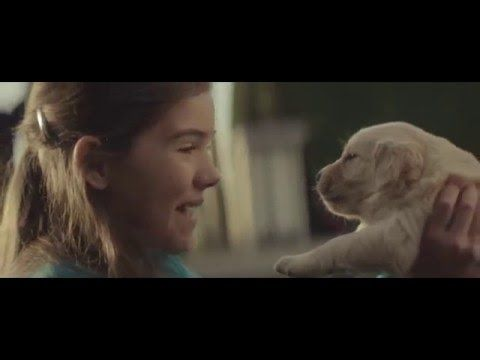 After watching this amazing advert I can't decide if I want a puppy or a car.... Ok, maybe I want both! #cutepuppy #cutevideo #puppy #puppyvideo #chevy #chevycommercial #chevyadvert #2014chevycommercial #oncor #oncorvideo #oncorvideoproductions