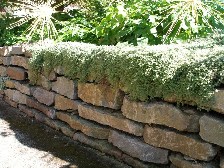 Dry stack wall paving stone pinterest retaining for River rock wall